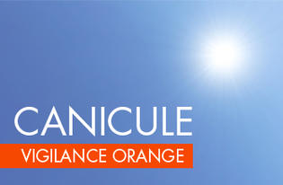 CANICULE Alerte ORANGE
